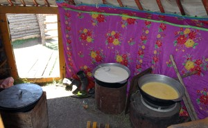 Inside a nomadic family's ger with large bowls of tsagaan idee (dairy produce).