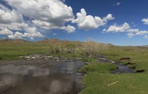 Mongolian countryside.