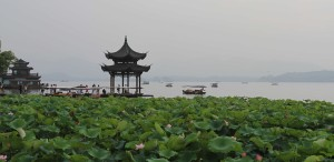 Pavilion and lotus plants along the edge of West Lake.