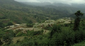Another view of rice terraces in the Longji Terraces Scenic Area.