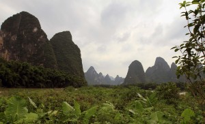 View of the mountains from a small island in the middle of the Li River.