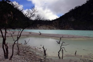 Kawah Puthi, surrounded by dead trees.