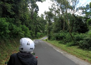 The road to Kawah Puthi and the backside of my driver on his motorbike.
