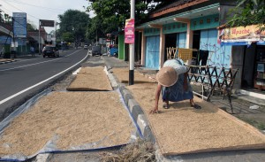 A man drying out rice on large mats on the sidewalk.