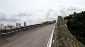 Henderson Waves bridge.