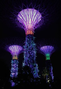 "Three ""supertrees"" found in the ""Gardens by the Bay""."