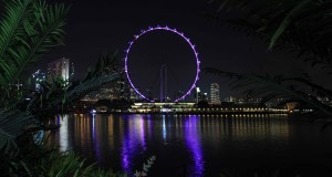 The Singapore Flyer lit up at night.