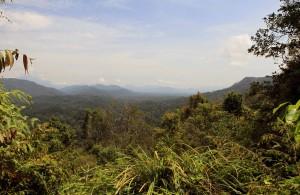 View from Bukit Teresik.