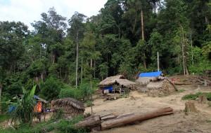 The Orang Asli village.