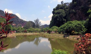Pond on the outside of Kek Lok Tong cave temple.