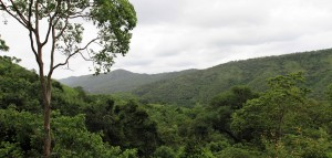 View of the surrounding mountains and jungle.