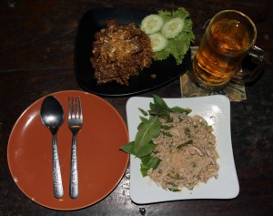My dinner of fried beef with garlic, stir-fried minced pork with glass noodles, and beer.