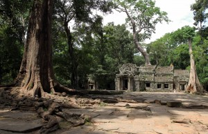 The entrance to the central temple in Ta Prohm.