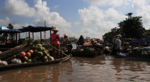 The many boats selling merchandise in the Phong Dien floating market.