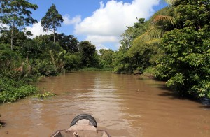 Our boat moving through the canal surrounded by jungle.