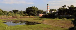 Mosque seen across the marsh.