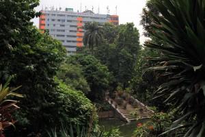 Pond in Baldha Garden.