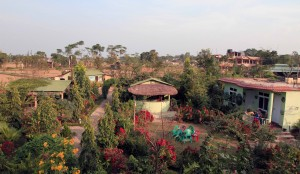 View from the balcony at the hotel I stayed at in Sauraha.