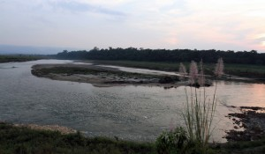 The Rapti River with Chitwan National Park on the other side.