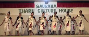 Clapping dance at the Sauraha Tharu Culture House.