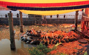 Large sculpture of Vishnu sleeping on a bed of snakes in the pond at Buddha Nilkantha Temple.