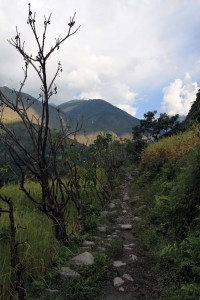 The trail outside of Badalbisaunaa.