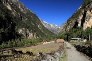The road through Talekhu.