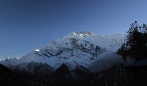 The Annapurnas at sunset.