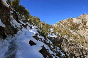 Snow covered trail heading up to Khangsar.