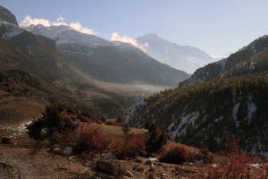 Hiking toward Manang in the misty morning.