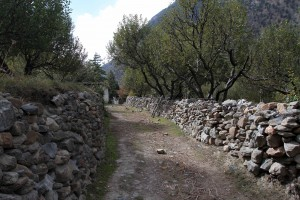Trail flanked by stone walls and orchard trees on both sides.