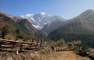 Wood fences in Taglung and the Nilgiri mountains.