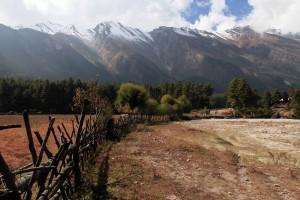 Wood fenceline near Chhoya.