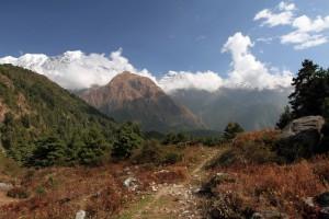 The trail near Kalopani.