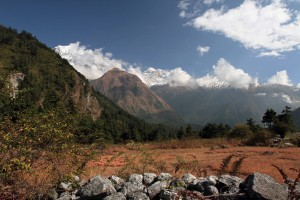 View of the Nilgiri mountains, farmland, and rock walls, seen from the trail to Kalopani.