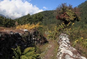 The trail winding between two rock walls, separating fields.
