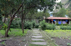 The organic garden interspersed between the guestrooms at the lodge I stayed at in Tatopani.