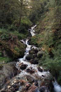 Stream found on the trail.