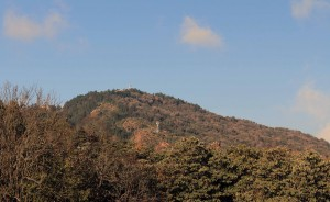 Poon Hill in the distance, with the viewing tower on top.