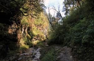 Continuing down the trail to Tadapani.