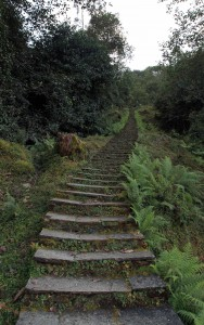 Stone steps leading to a shrine outside of Ghandruk.