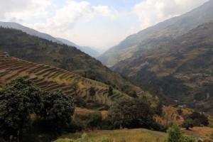 Terraced hillside by Landruk.