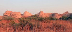 Tughlaqabad Fort.