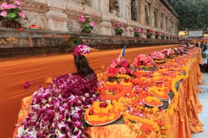"A lot of flowers set up along the Cankamana (""Cloister Walk""), where Buddha spent his third week here, walking up and down in meditation."