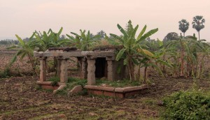 Shrine structure surrounded by a banana plantation in Hampi.
