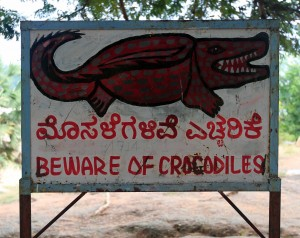 """Beware of Crocodiles"" sign next to the Thungabgadra River."