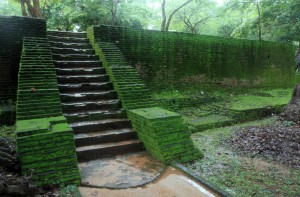 Moss covered stone structure in Polonnaruva.