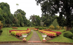 One of the entrances to the Flower Garden inside the Royal Botanic Gardens in Kandy.