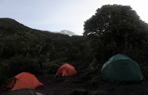 Machame Camp in the morning with a view of Kibo (the highest of three volcanic cones on Kilimanjaro).
