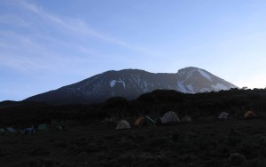 Kibo in the morning light, seen from Shira Cave Camp.
